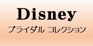Disney Bridal Collection ディズニー ブライダルコレクション